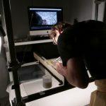 photo du tournage du film Diamenteurs de Chloé Mazlo